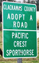 Pacific Crest Sporthorse adopted a road